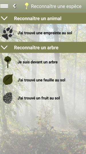 Application iphone pour reconnaitre les arbres